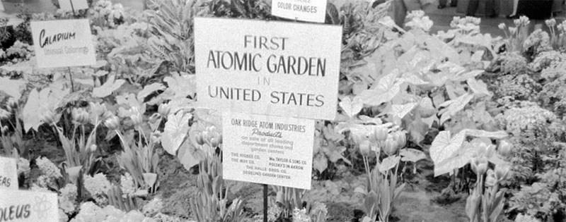 Gamma Gardens: The Garden of the Future