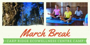 March Break Camp Ecowellness Centre
